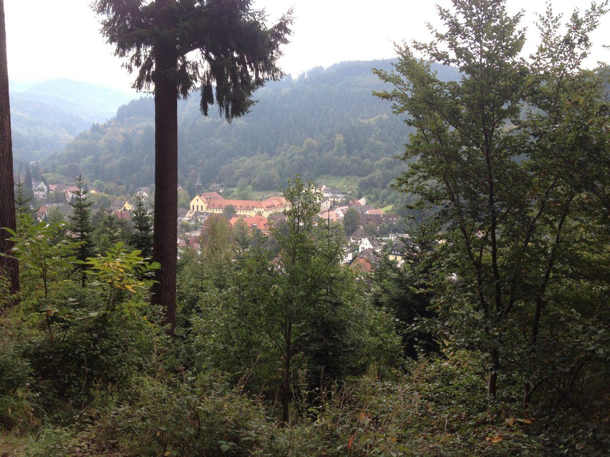 【5月30日】オンラインセミナー「地域エネルギー中間支援組織の未来ーーオーストリアに学ぶ」